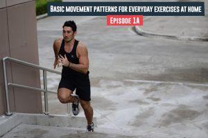 Basic Movement Patterns