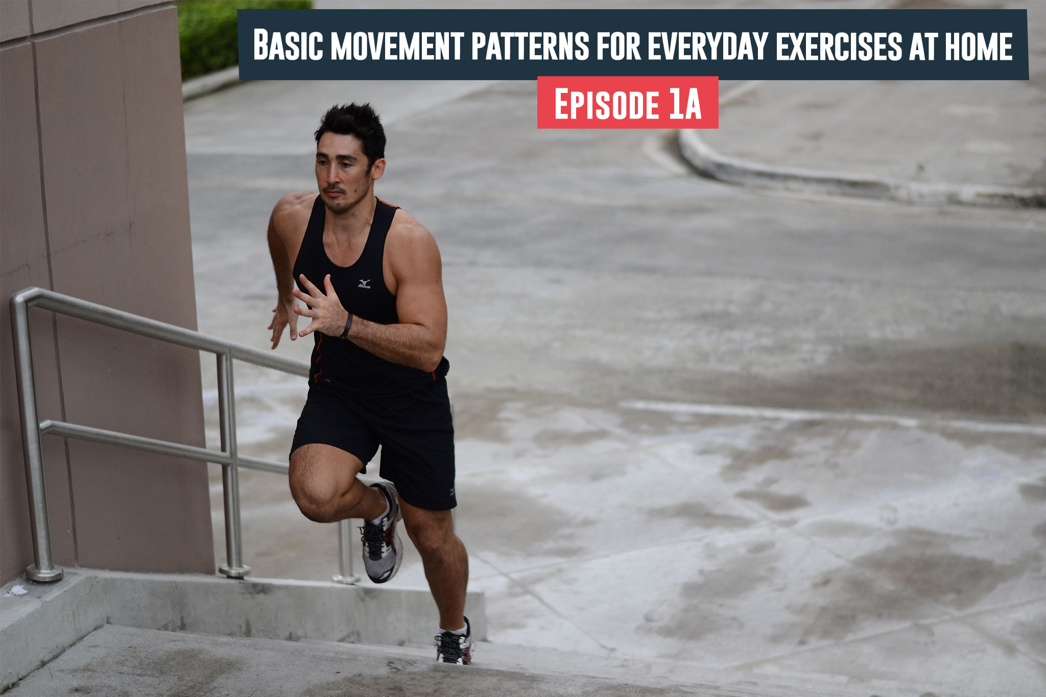Basic Movement Patterns